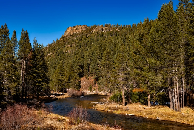 Sierra Nevada beauty along the Truckee River. (Photo: David Mark from Pixabay)
