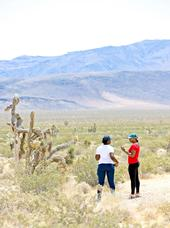 Family units can visit nature together during the coronavirus pandemic.