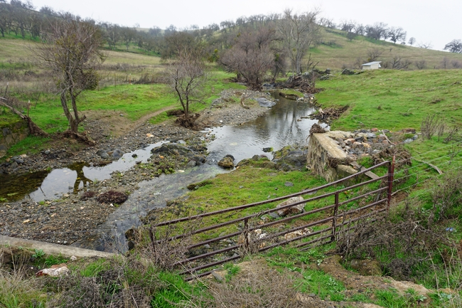 California's developed water is vital to urban areas, irrigated agriculture and the environment.