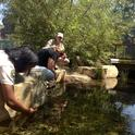 A constructed wetland at the Los Angeles County Natural History Museum provides habitat, removes pollutants and allows for groundwater recharge. It also provides an opportunity to learn about and connect with nature in the city. Sabrina Drill conducts a workshop on aquatic ecosystems. Photo by Jessica Chen