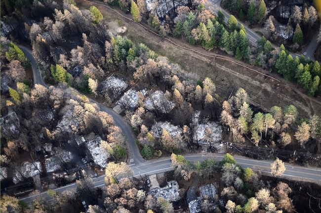 Aerial image over Magalia post-Camp Fire illustrates a gradient of fire damage to overstory vegetation with distance from destroyed homes. Photo by Owen Bettis, Deer Creek Resources