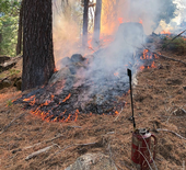 A torch sits in the foreground as flames blacken low, dry vegetation.
