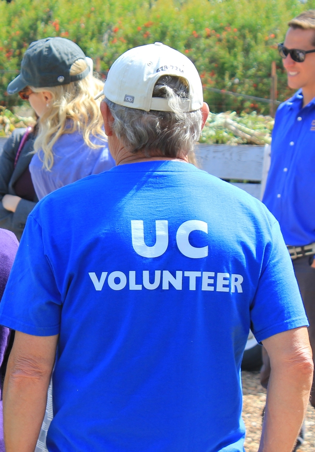 uc volunteer