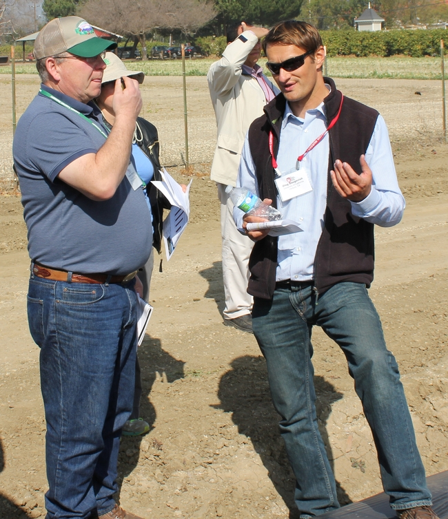 Oleg Daugovish (right), UCCE-Ventura Strawberry Advisor