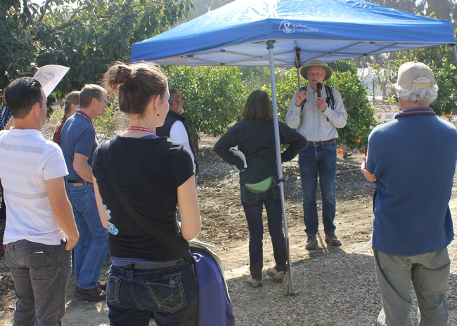 Farm Advisor Ben Faber talks in the orchard