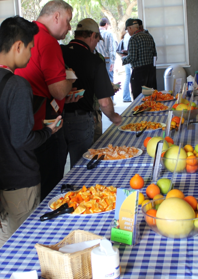 Farmers sample strawberry and citrus varieties