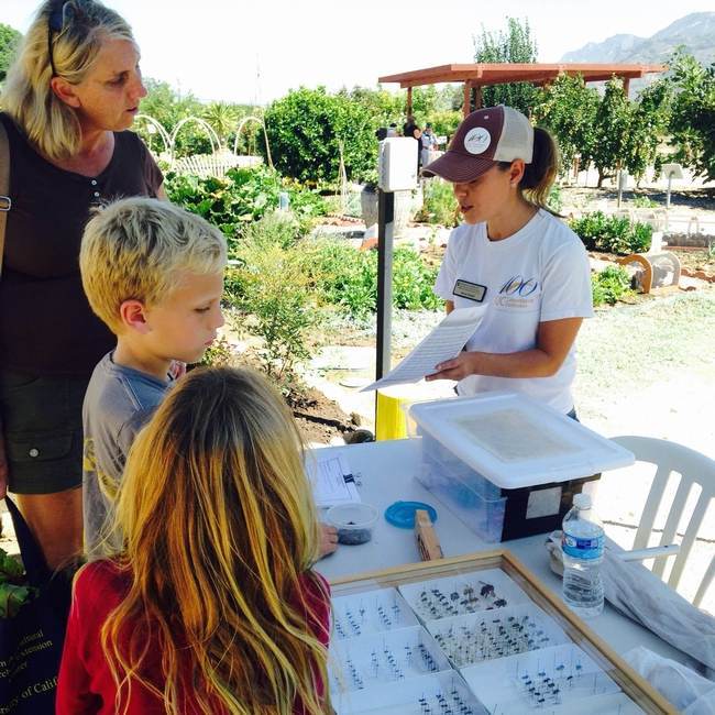 Anna Howell, SRA and Entomologist shares information about bees