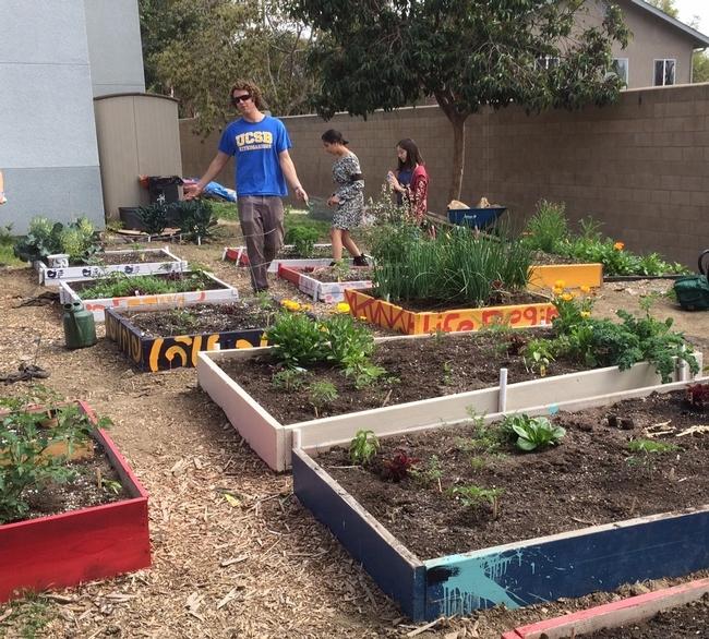 Kurt Miller, Foothill Tech HS teacher in school garden