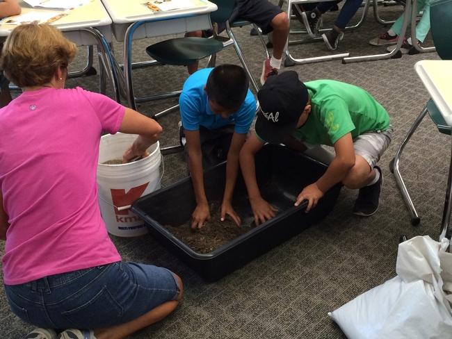 Building a class sized worm bin