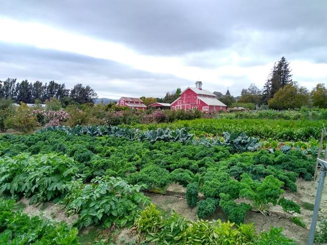 UC HAREC at the Faulkner Farm in Santa Paula