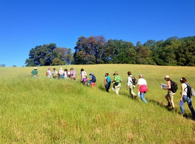 CA Naturalist class hopland