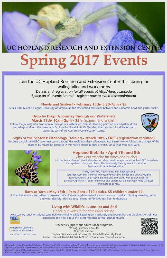 Spring 2017 lupin