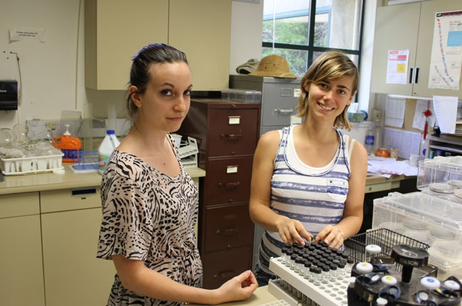 Lea Marquez of Nice, France, and Marion Mimbielle of Pau, France, are graduate students from Western Brittany University studying microbiology and food safety in the Michaides lab for the summer.