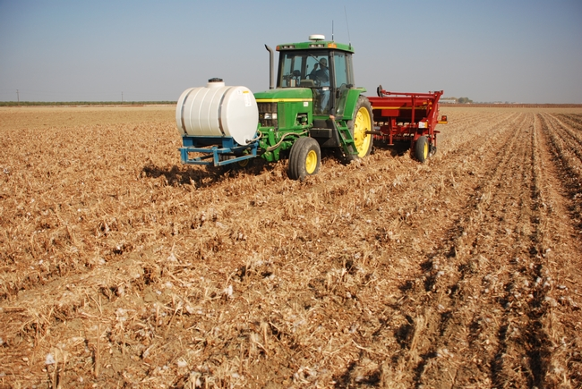 Conservation tillage can achieve yields similar to standard cultivation methods and at lower cost.