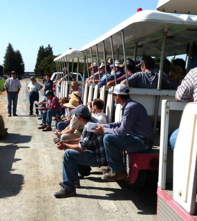 Forage and Alfalfa Day attendees visiting research plots at Kearney. (photo by P Cavanaugh)