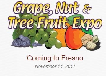 grape and nut expo logo
