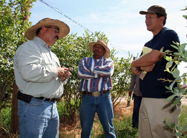 Manuel Jimenez, left, speaks with farmers Miguel Jaramillo Garcia and Young Kwun.
