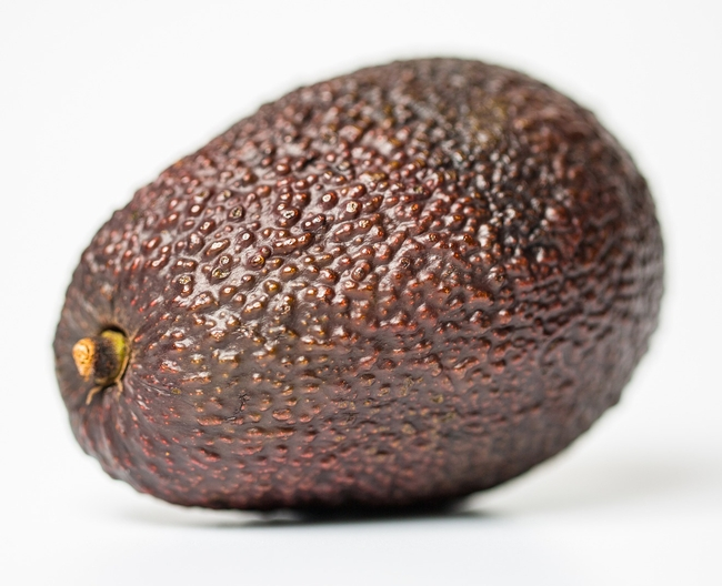 A comprehensive understanding of how water quality impacts avocado tree health and fruit quality is still limited.