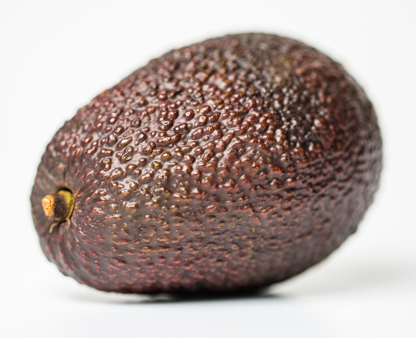 Water quality impacts on California avocado – a