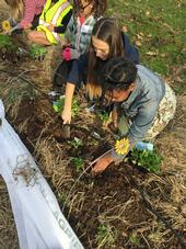 The Shaping Healthy Choices Program features the use of garden-enhanced learning.