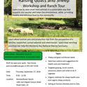 Sheep and Goat Workshop Flyer