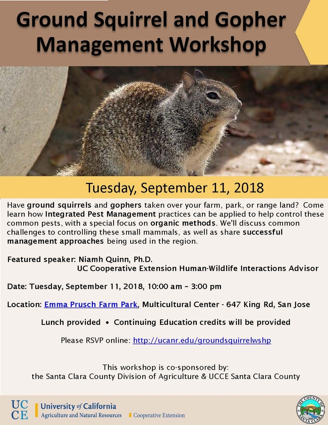 GS Gopher Workshop Flyer