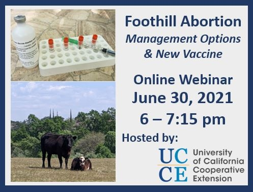 foothill  abortion workshop