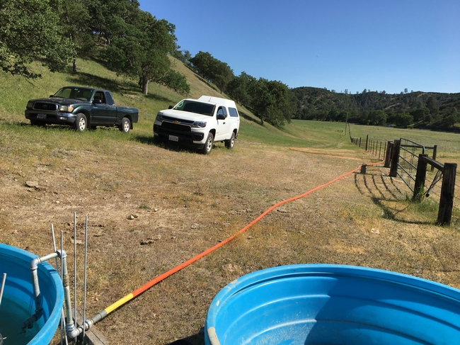 Figure 5. Portable water troughs with floats are connected to the permanent water line with orange HDPE hose.
