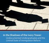 Undocumented Undergraduates