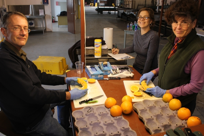 David Obenland, Jamie Nemecek, Mary Lu Arpaia evaluate fruit