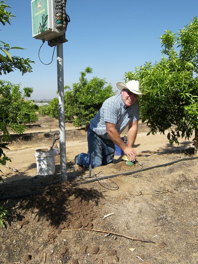 Craig Hornung installs a soil moisture sensor at Lindcove REC.