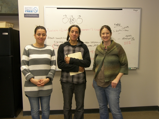 Sabrine Dhaouadi (left), visiting scientist, and Elizabeth Fichtner, UCCE Tulare farm advisor (right) introduce Stephanie Theodore (center) to the pathology facility at LREC.