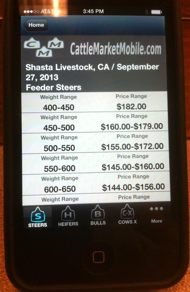Shasta-Smartphone-Pic