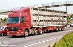Livestock trailer picture
