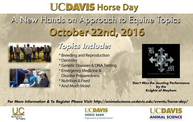 UCD Horse day2016