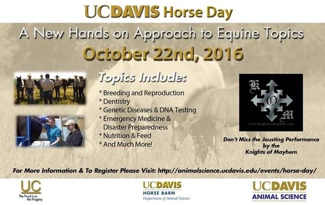 UCD Horse day2016