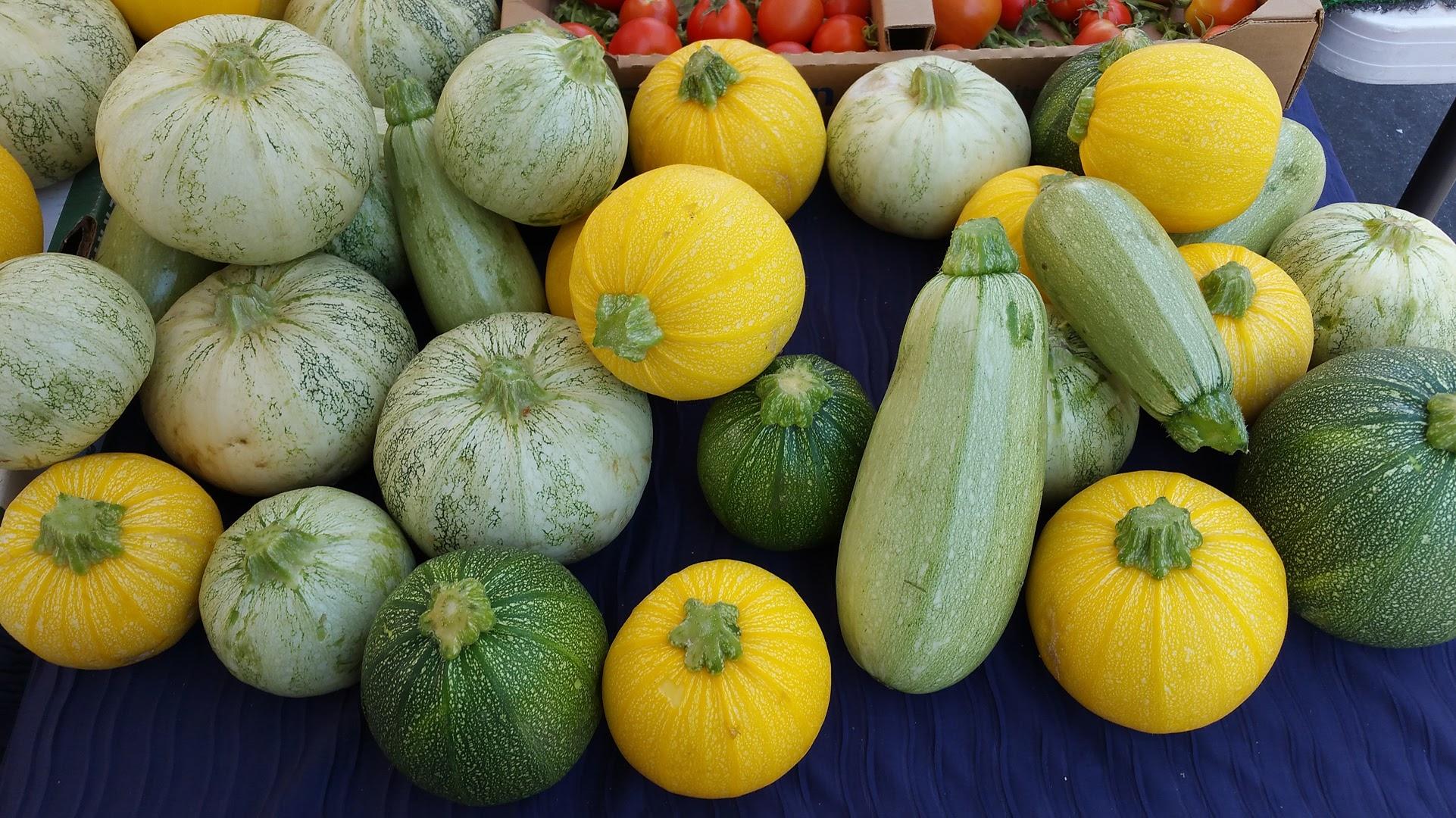 gardening tips blog santa cruz county