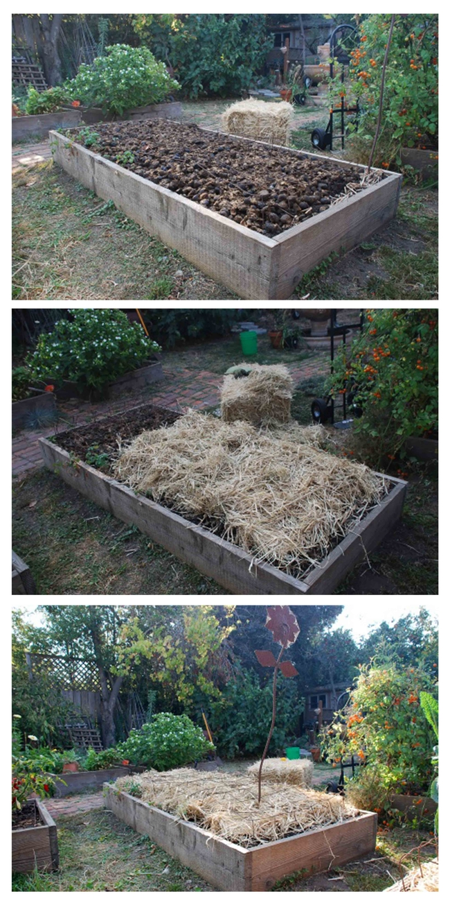 A composted planting bed.