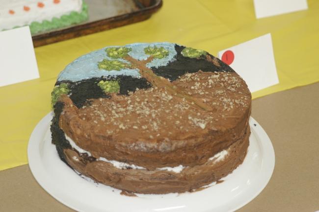 4-H Van Gogh style cactus cake