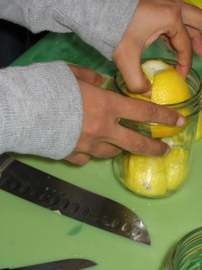 BR Lemon demo1