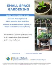 F-Small-Space-Gardening-