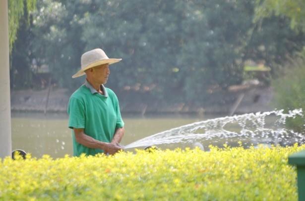 man-watering