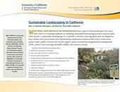 Sustainable-Landscaping-in-California-269102311-1