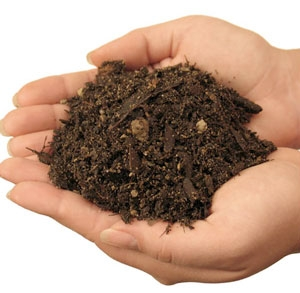 soilhandful