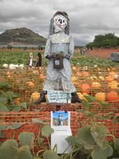 scarecrow-15-2