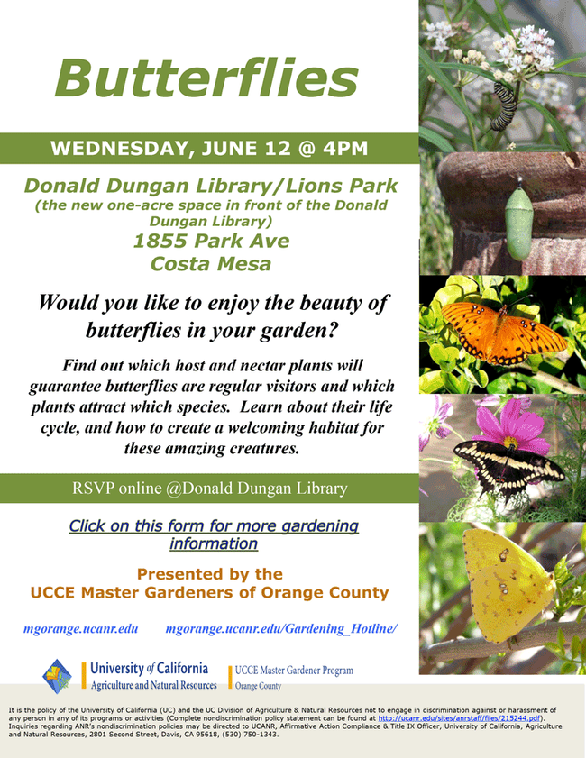 Consider Joining Us For Butterflies in Your Garden