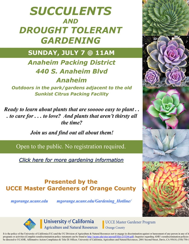 Join Us At Succulents And Drought Tolerant Gardening