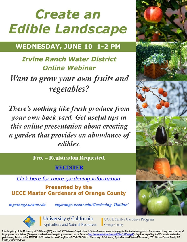 Want To Grow Your Own Fruits And Vegetables?
