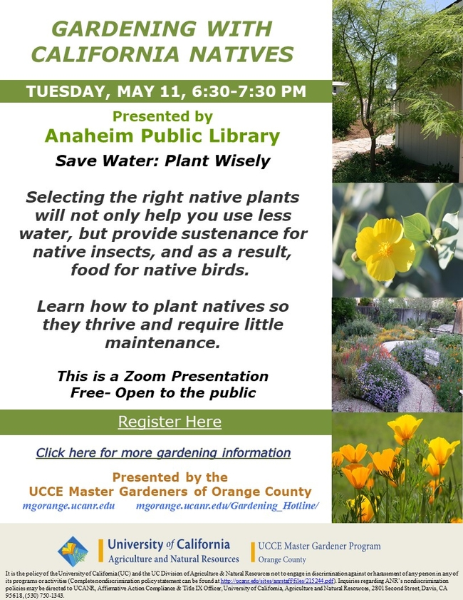 Join Us For Gardening With California Natives