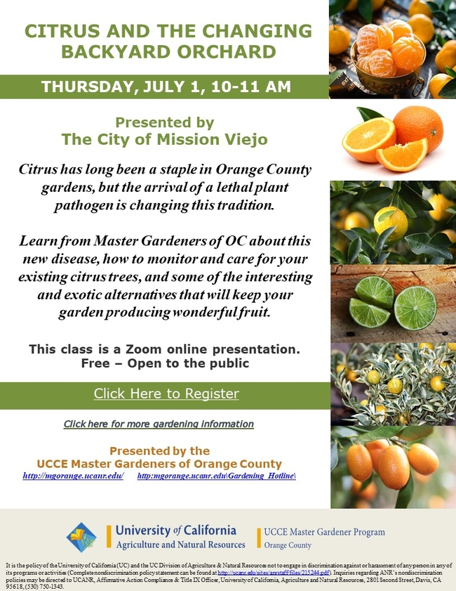 Learn about a lethal plant pathogen, how to monitor and care for your existing citrus trees.
